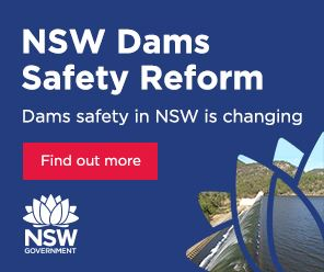 Dam safety consultation